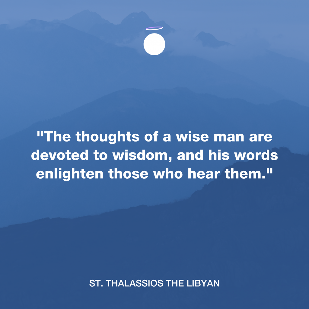 Hallow Daily Quote - Wisdom