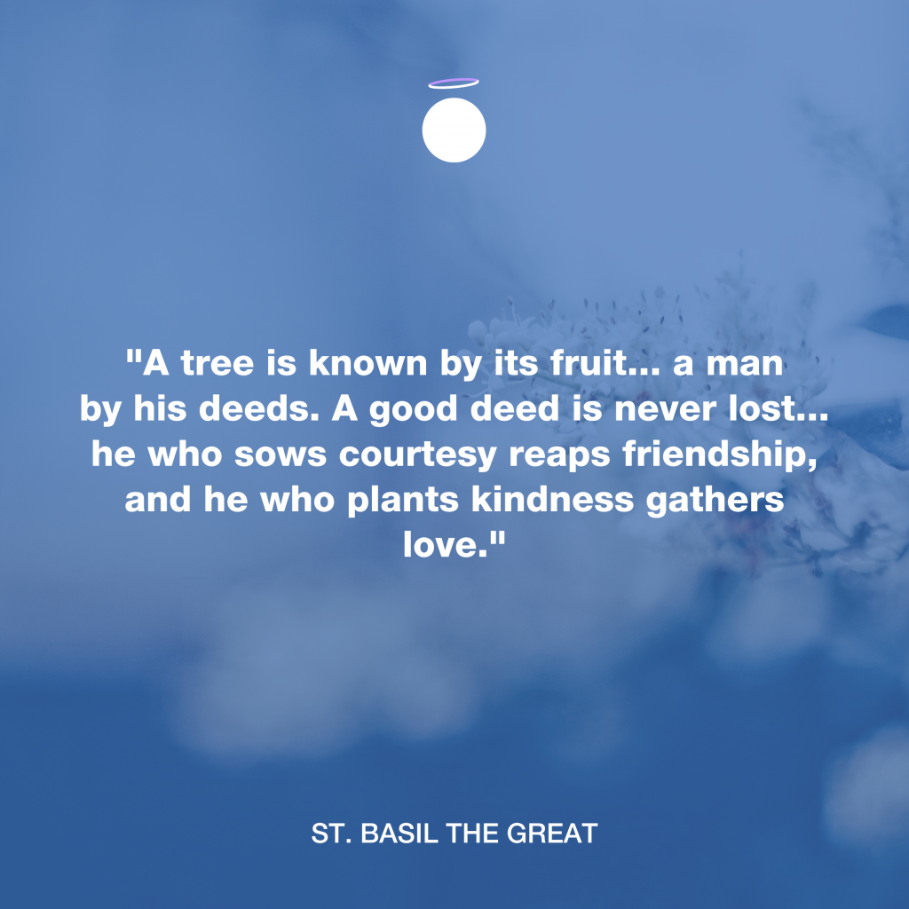 Hallow Daily Quote - Plant Kindness Gather Love