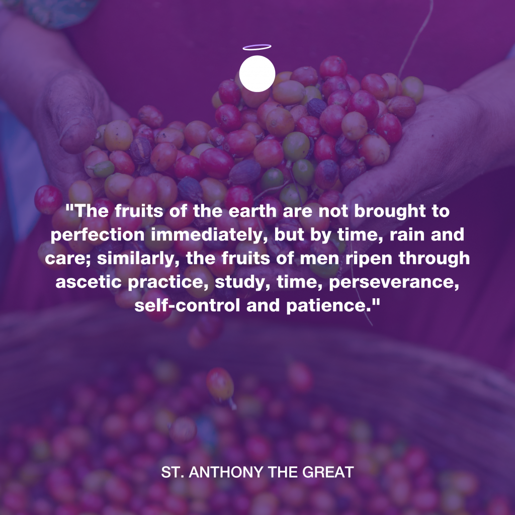 Hallow Daily Quote - Fruits of the spirit