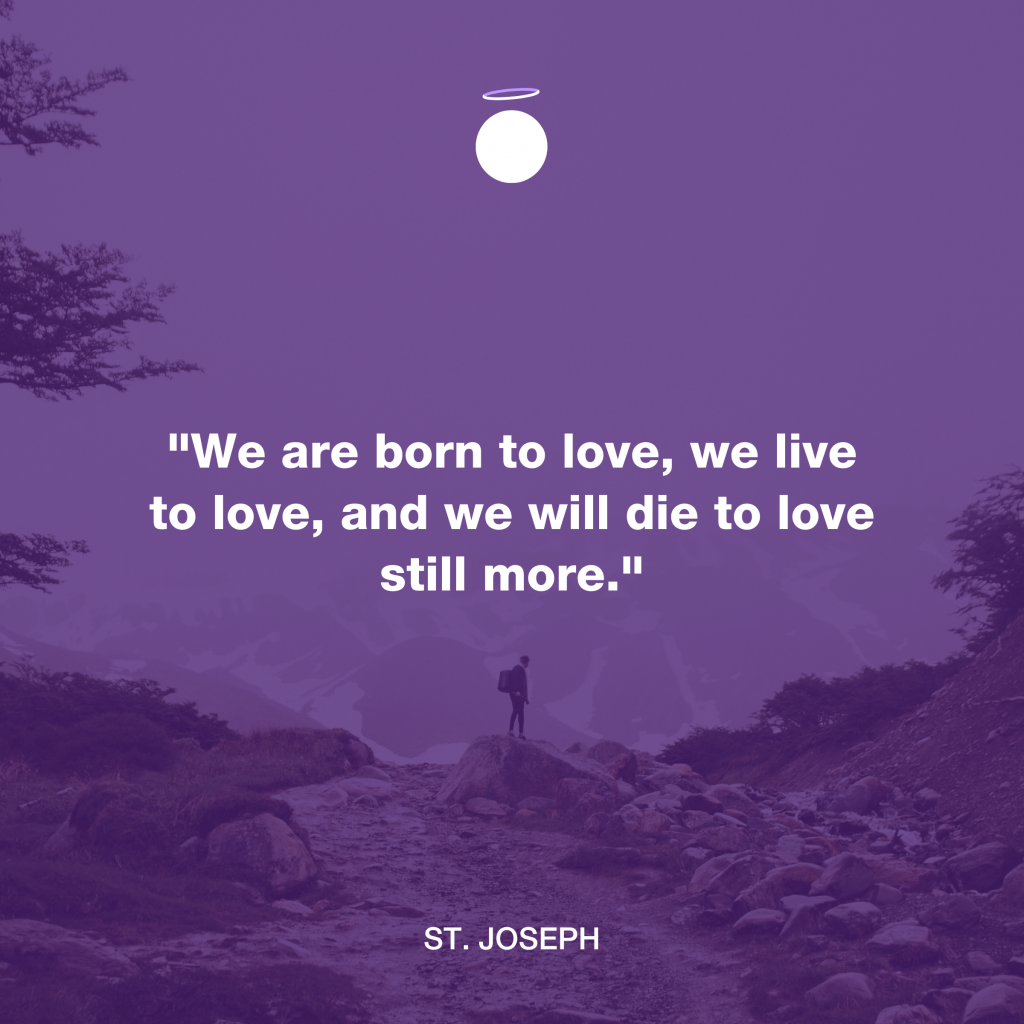 Hallow Daily Quote - live to love