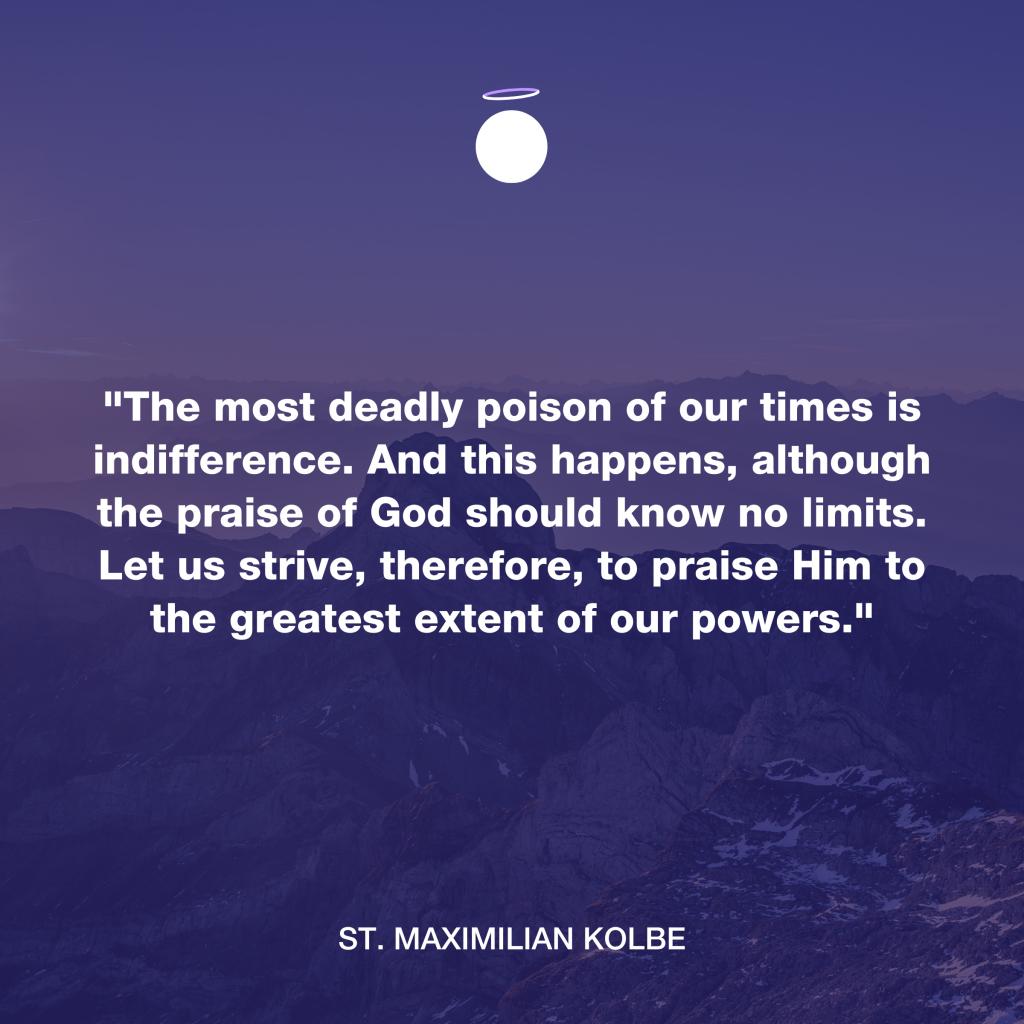 Hallow Daily Quote - Saint Maximilian Kolbe