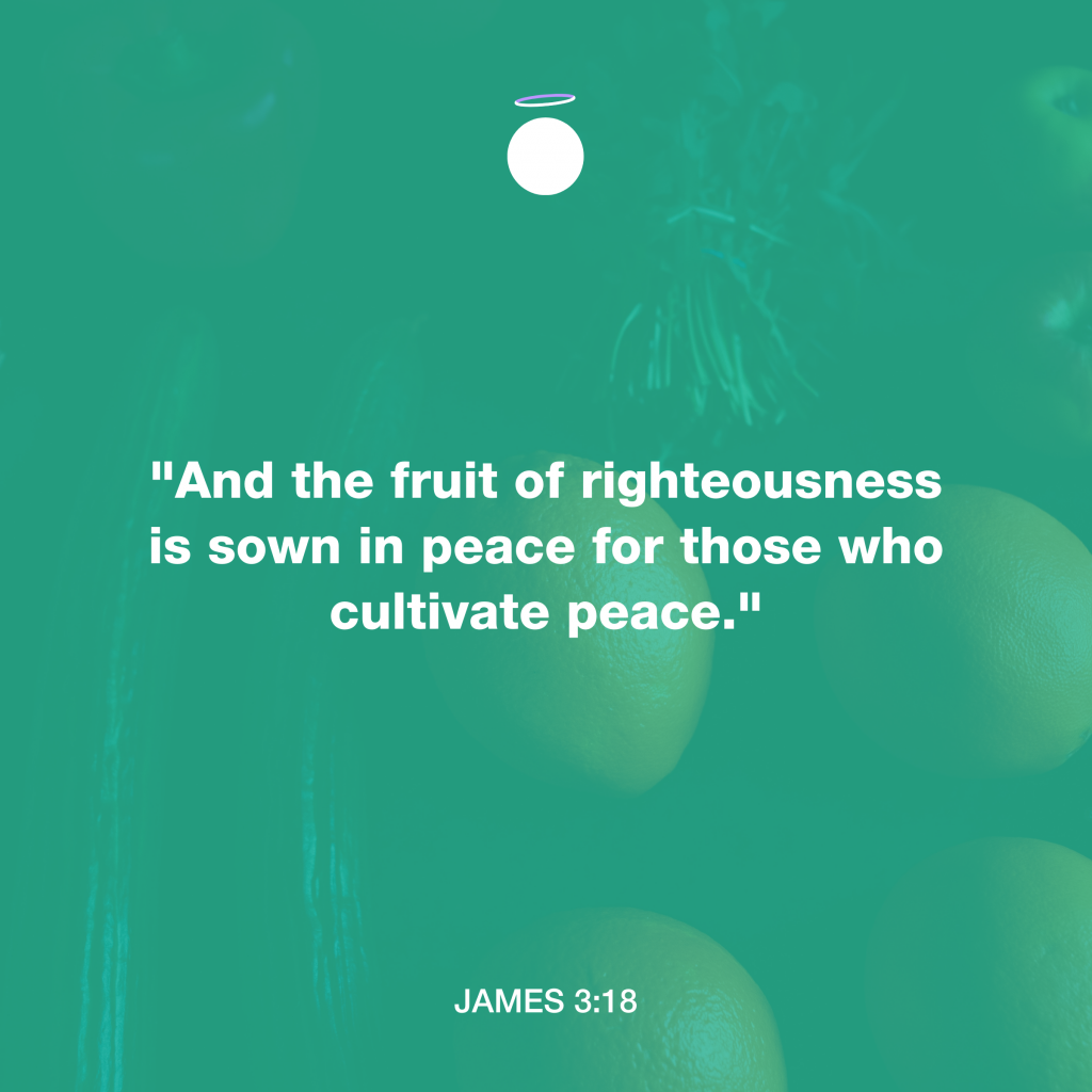 Hallow Bible Quote - Sown in Peace
